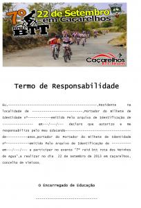 Termo de Responsabilidade 2013